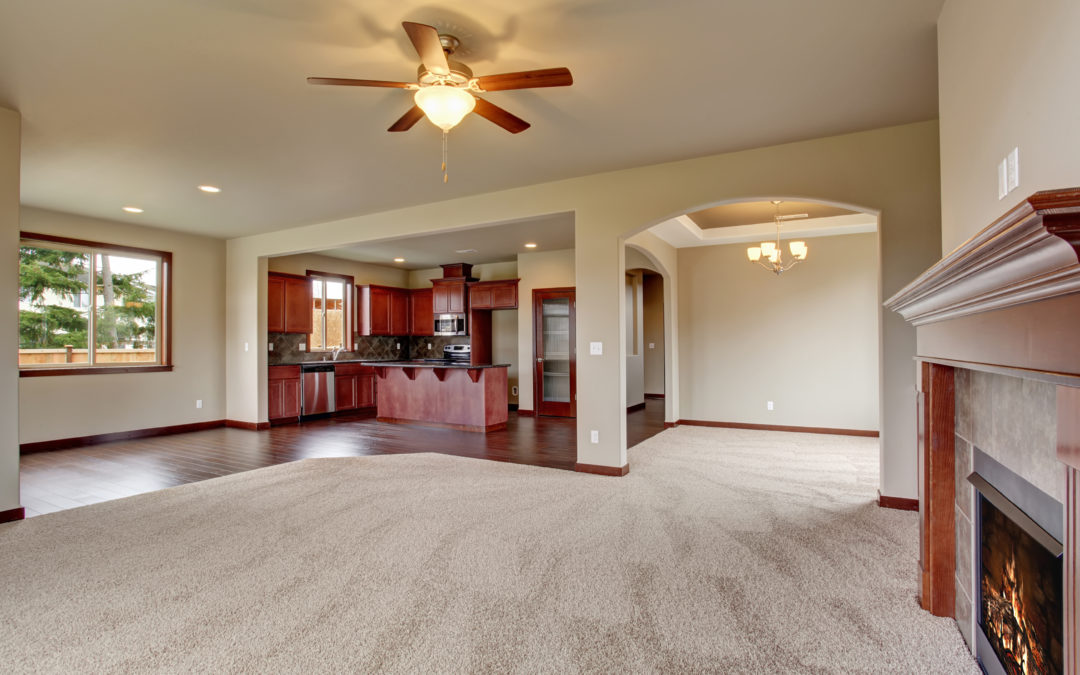 Why should we consider Steam carpet cleaning?